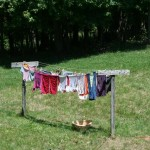 Homesteading clothes line