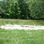 Hometeading cardboard