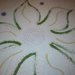 Floorcloth inside of flower