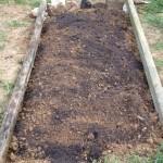 Strawberry top soil