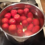 Tomato in hot water