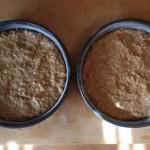 Oat cake in pans