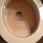 Toilet bomb toilet